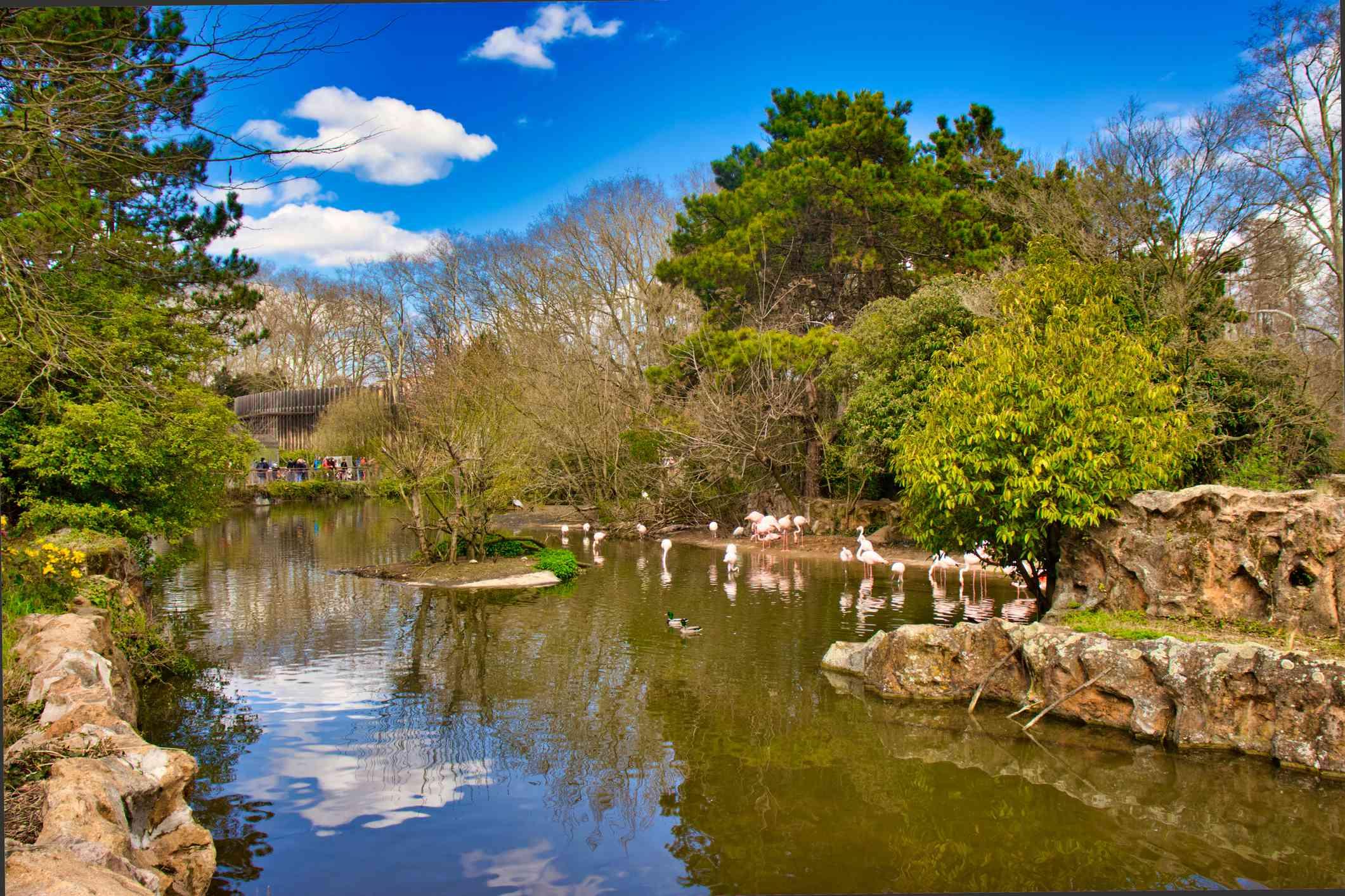 A man-made lake at the Park of the Golden Head (Parc de la Tete d'Or) Lyon, France