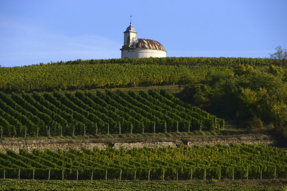 Chapel and vineyard, Tokaj wine region, Hungary