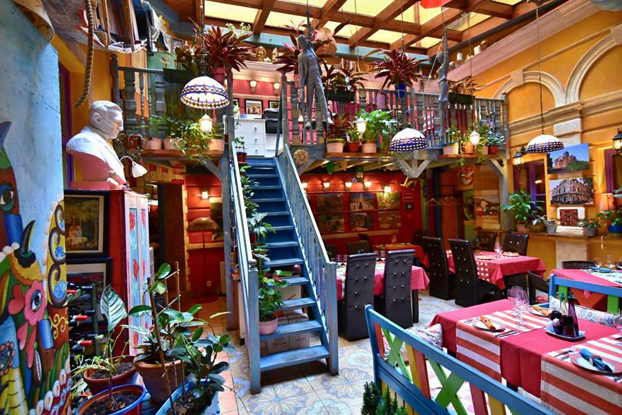 Colorful interior of Luka Lu restaurant with a blue wooden staircase laeding to a mezzanine. There are plants along the left-hand side of the staircase. hanging from the ceiling and dotted around the restaurant