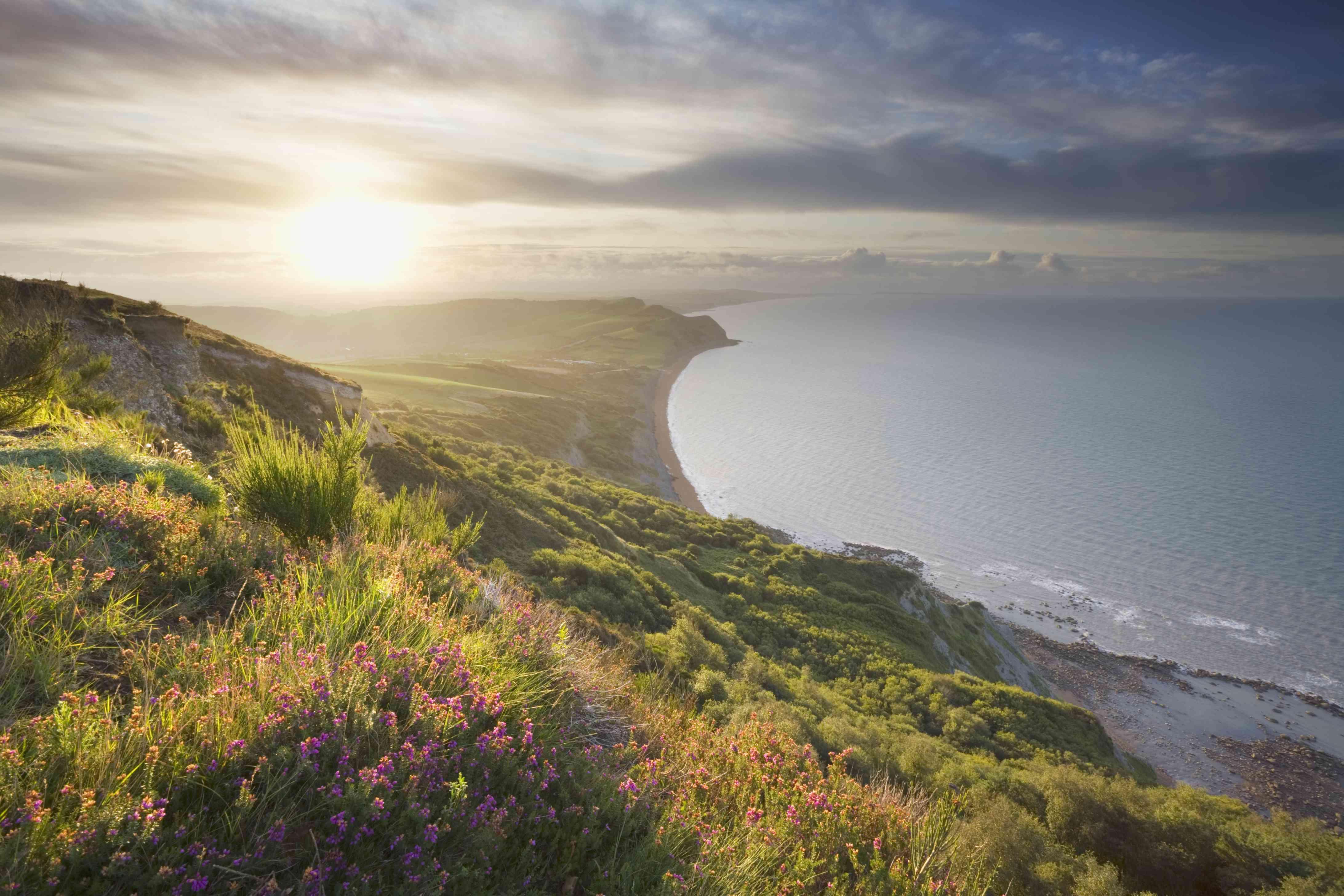 View east from Golden Cap at Sunrise, Jurassic Coast World Heritage Site, Dorset, England, UK