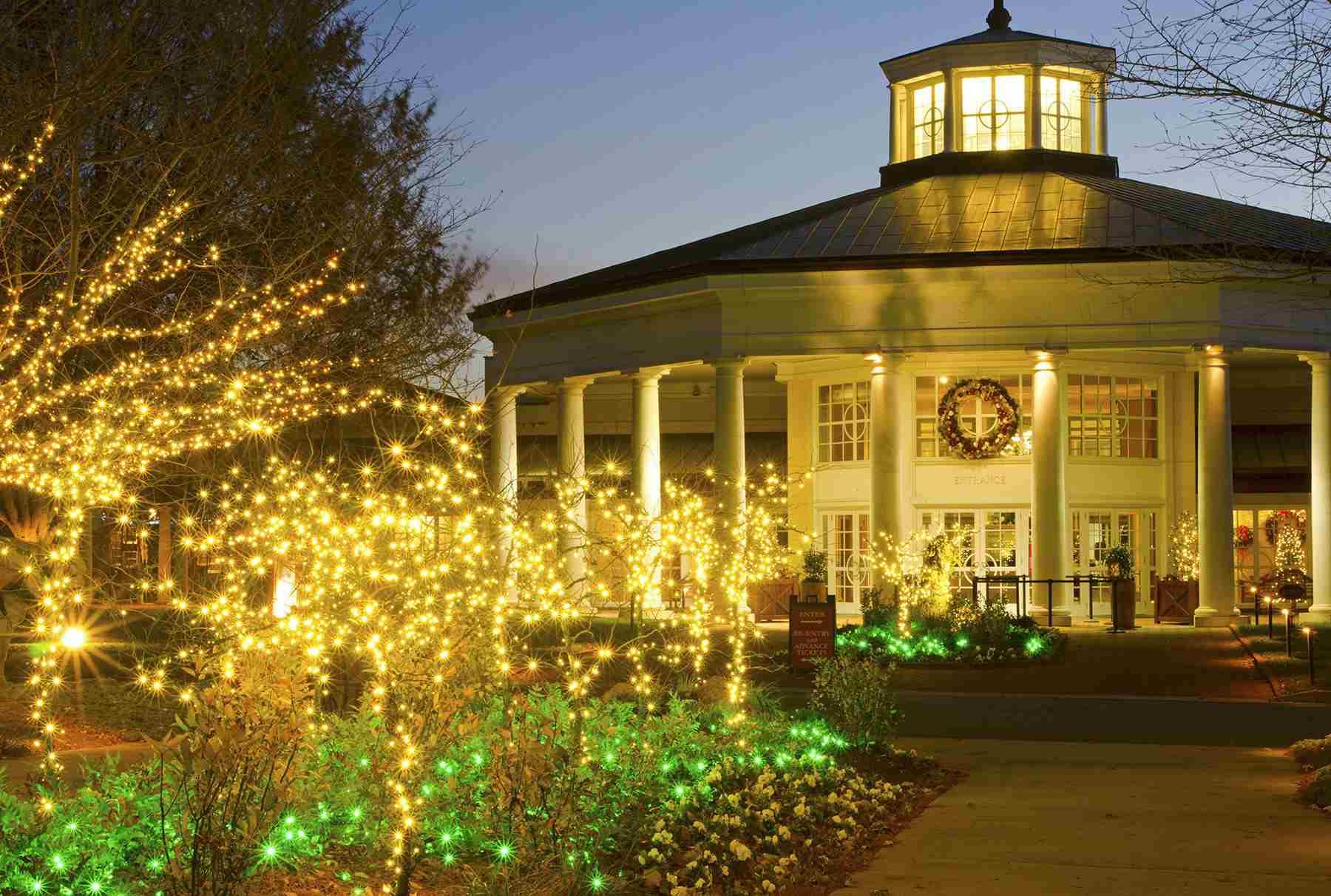 Daniel Stowe Botanical Garden Christmas
