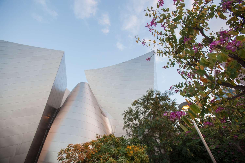 The Public Garden at Walt Disney Concert Hall