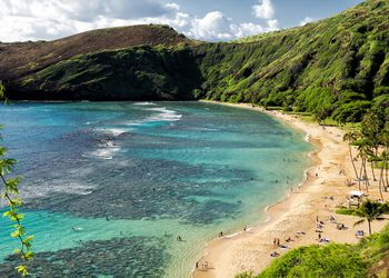 Sandy coastline and green cliffs, Hanauma Bay, Oahu, Hawaii, USA