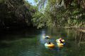 Bathers and Tubers at Blue Springs State Park, Blue Springs, Florida.