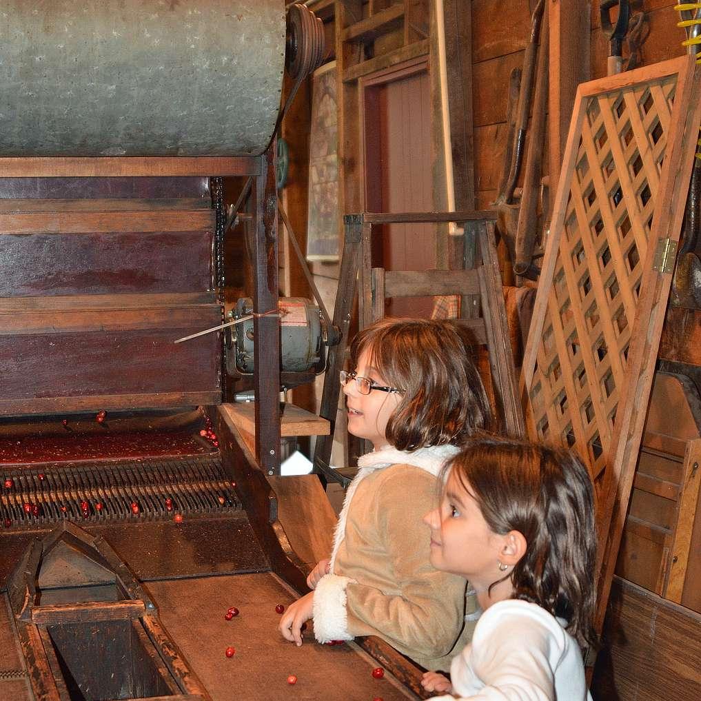 Antique Cranberry Separator