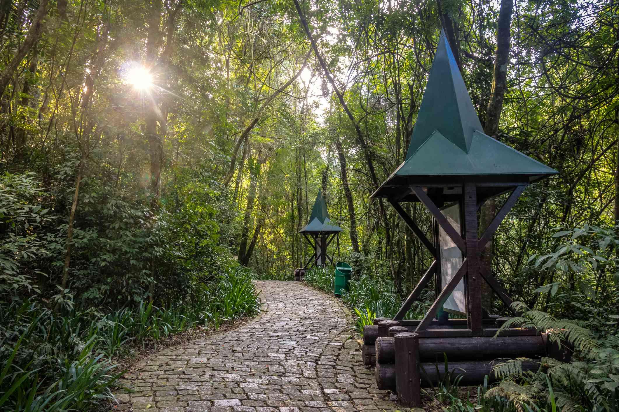 Sendero Hensel y Gretel (Trilha Joao e Maria) del Bosque Alemao (Parque Forestal Alemán) - Curitiba, Paraná, Brasil