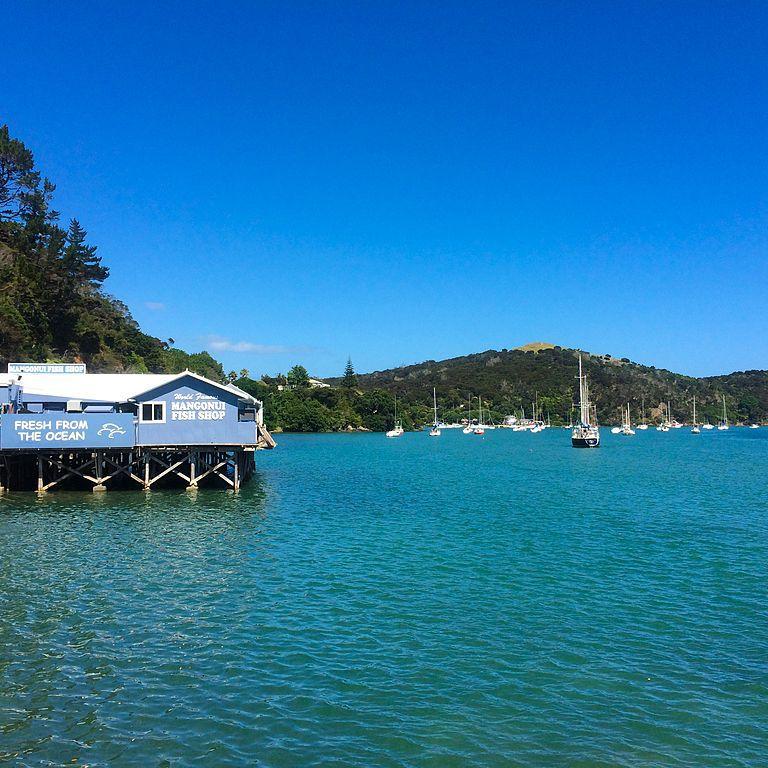 The 13 Best Restaurants in New Zealand