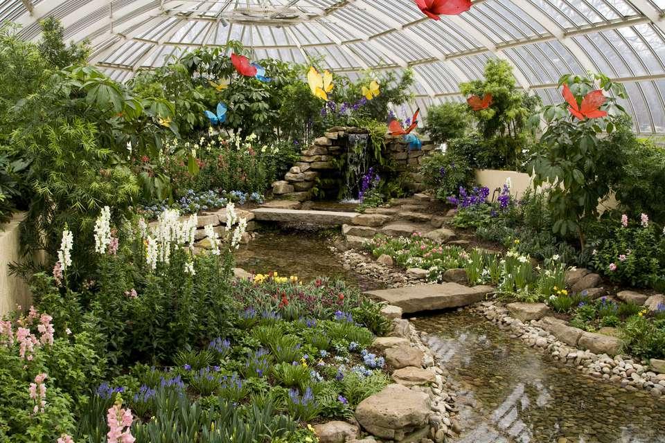 Fuente y arroyo rodeado de harinas y plantas en el Conservatorio Phipps