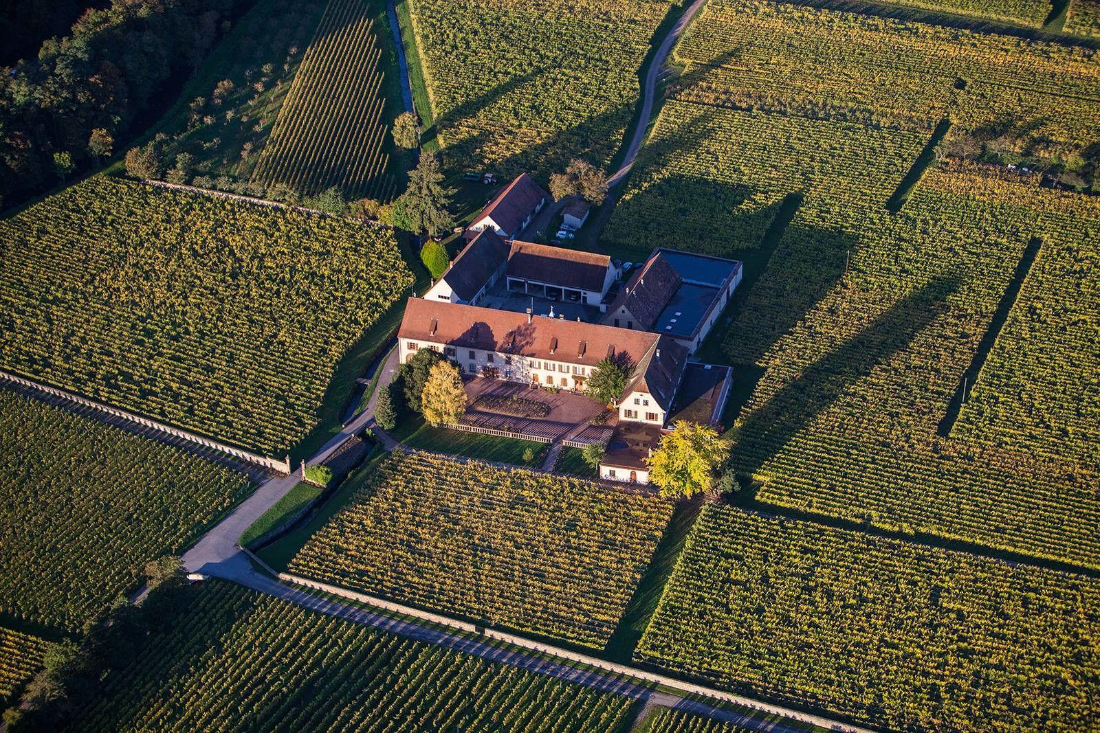 Domaine Weinbach Overhead view