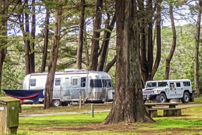 How To Make California State Park Camping Reservations