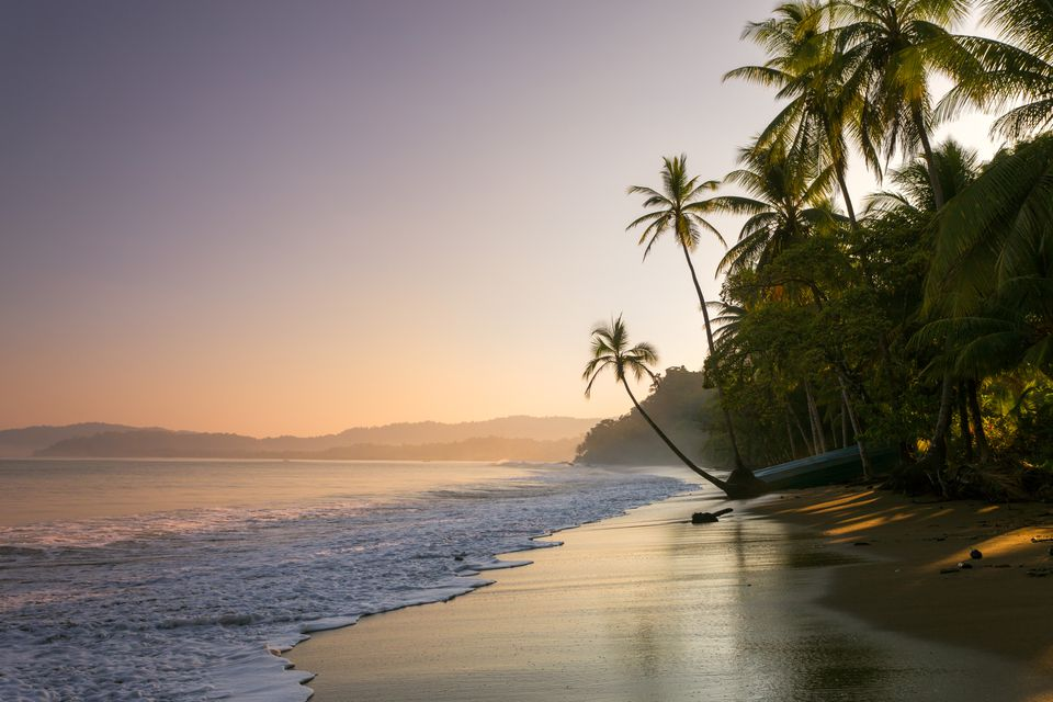 Sunset on palm fringed beach, Costa Rica