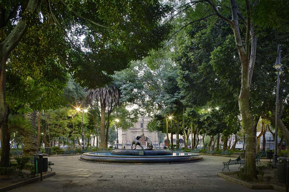 Iconic coyotes fountain in downtown Coyoacan