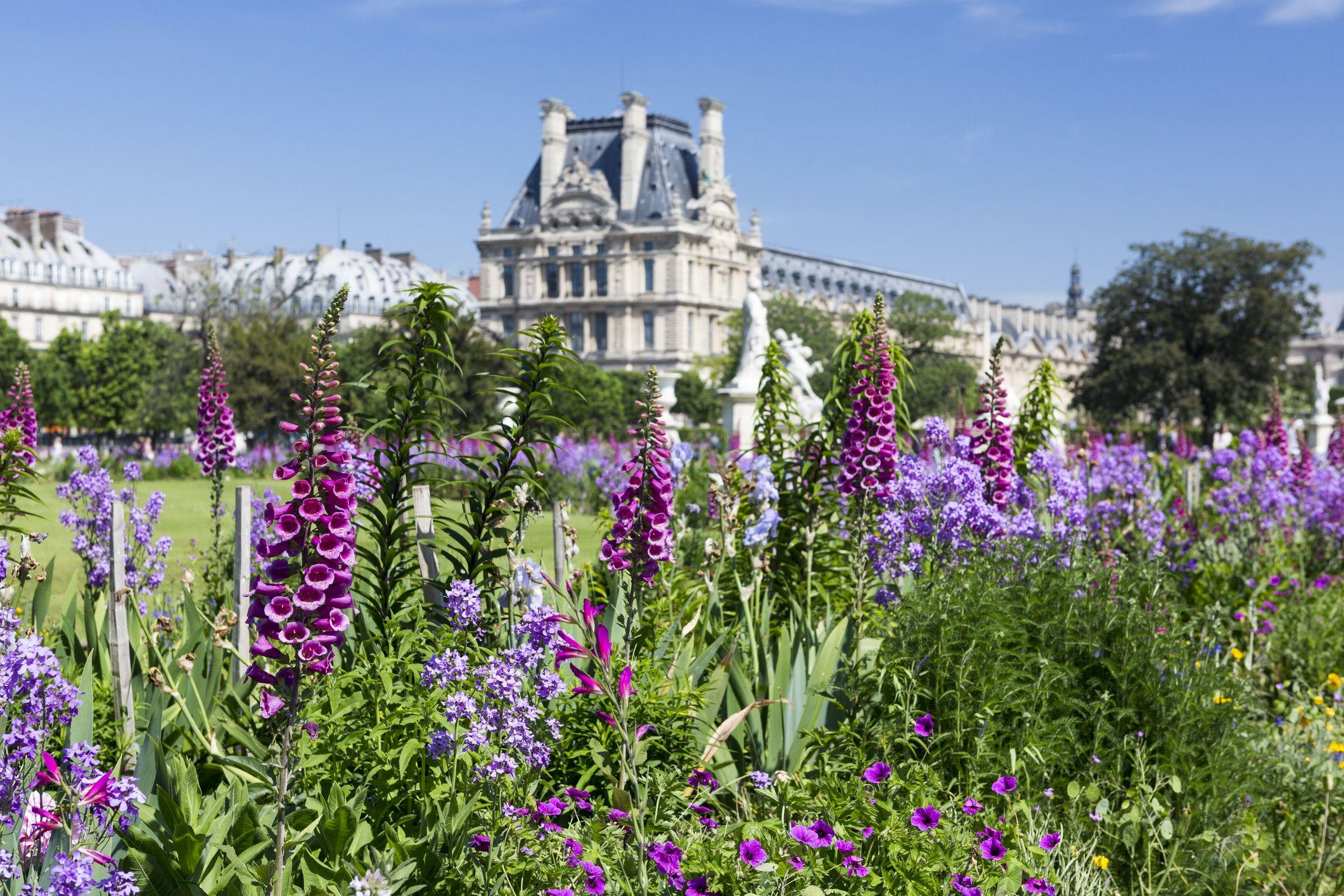 Cama de flores en el Jardin des Tuilleries