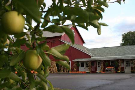 Ohio Apple Growers Association