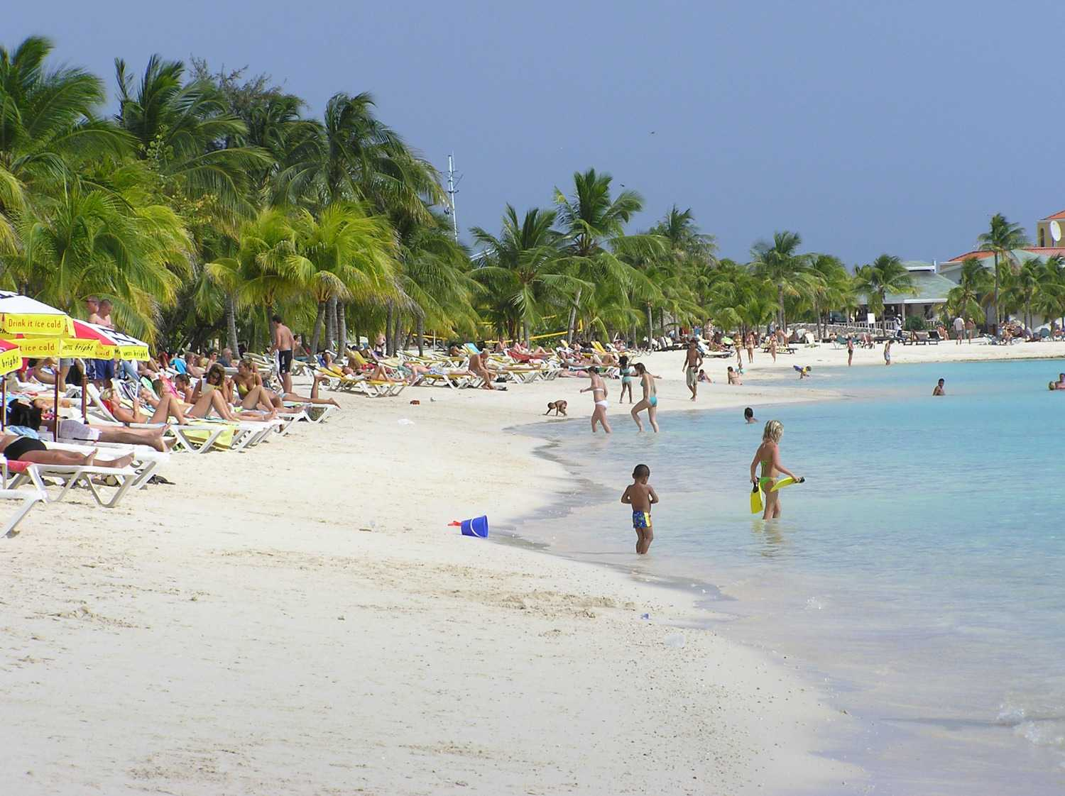People enjoying Mambo Beach in Curaçao, both on sand and in clear blue water. Beach is lined with palm trees.