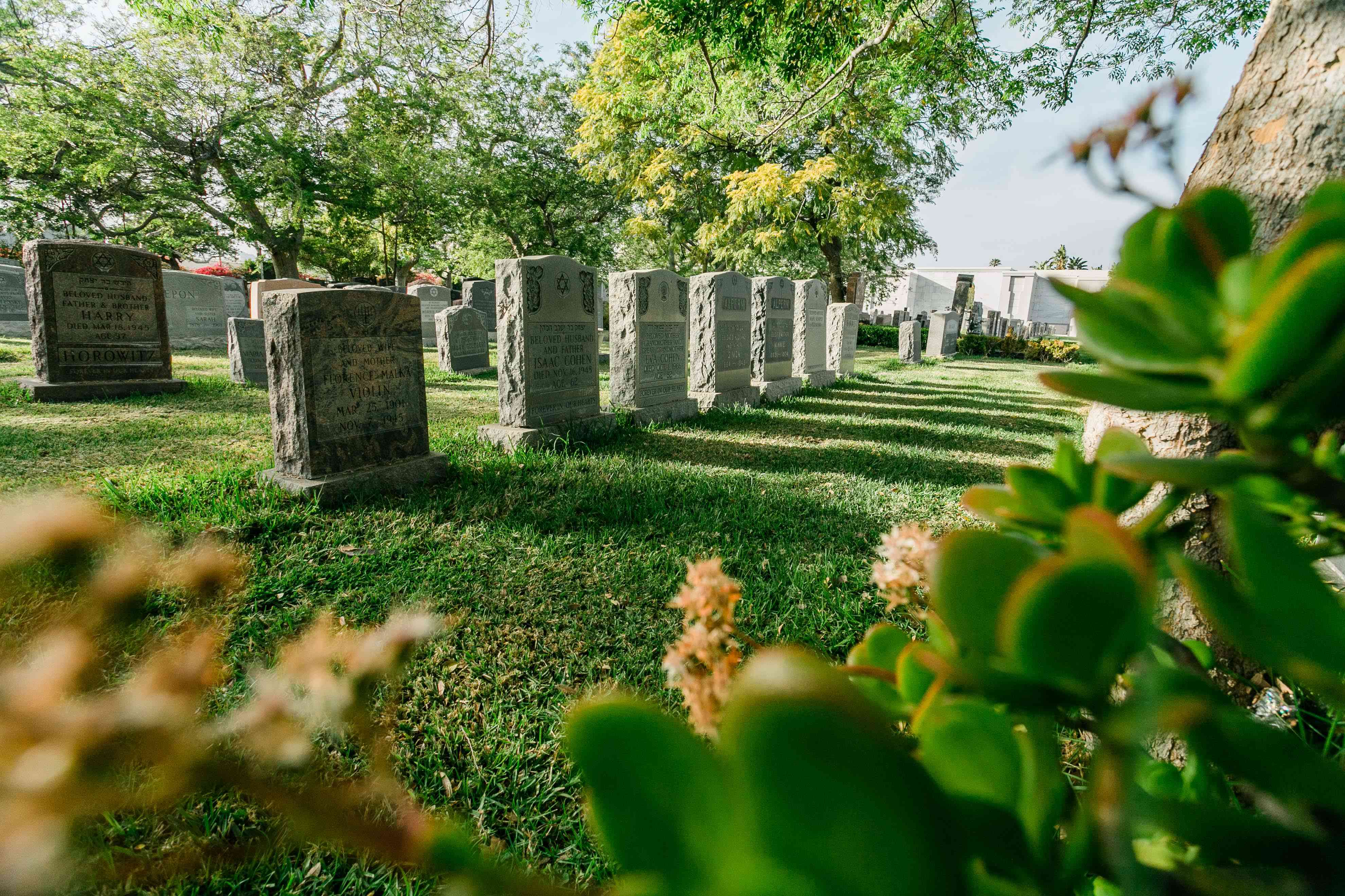 Hollywood Forever Cemetery in LA