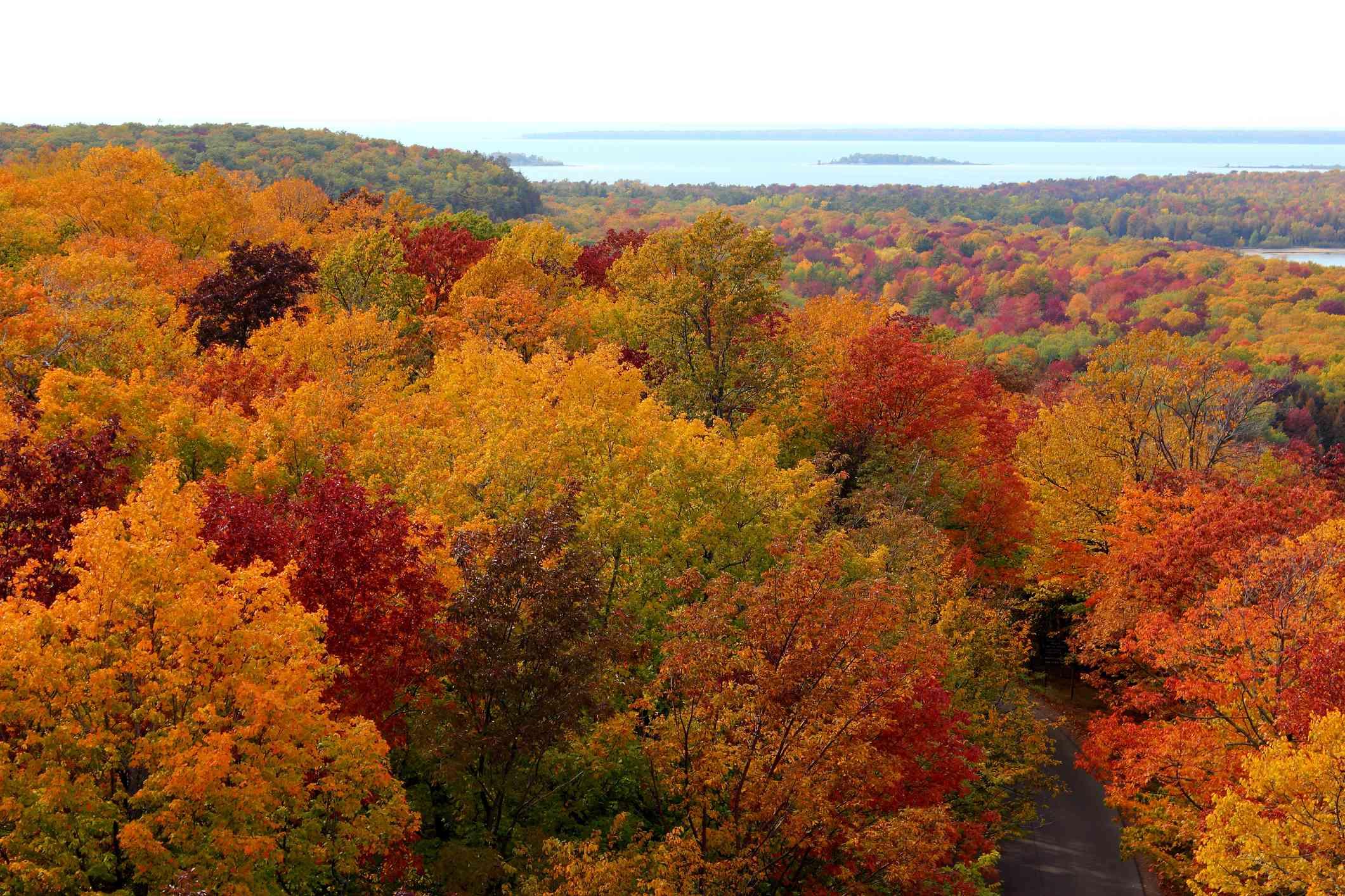 Fall colors around Sturgeon Bay