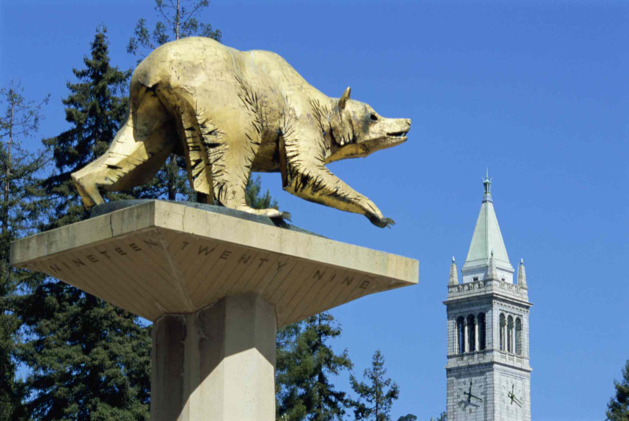 The Top Things to Do in Berkeley, California