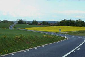 Road through Swedish landscape