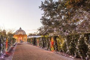Christmas Lights at New Orleans Botanical Gardens.