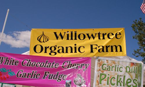 Garlic Goodies at Vermont Garlic Festival - Willowtree Organic Farm Sells Garlic Fudge and Pickles