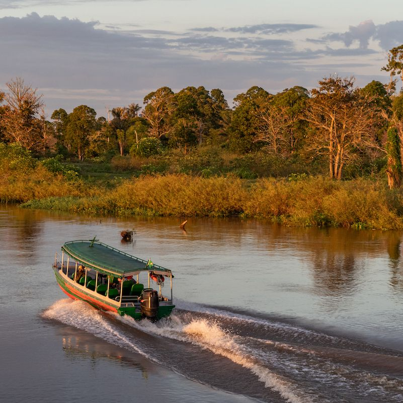 The Best Cruises To Take On The Amazon River