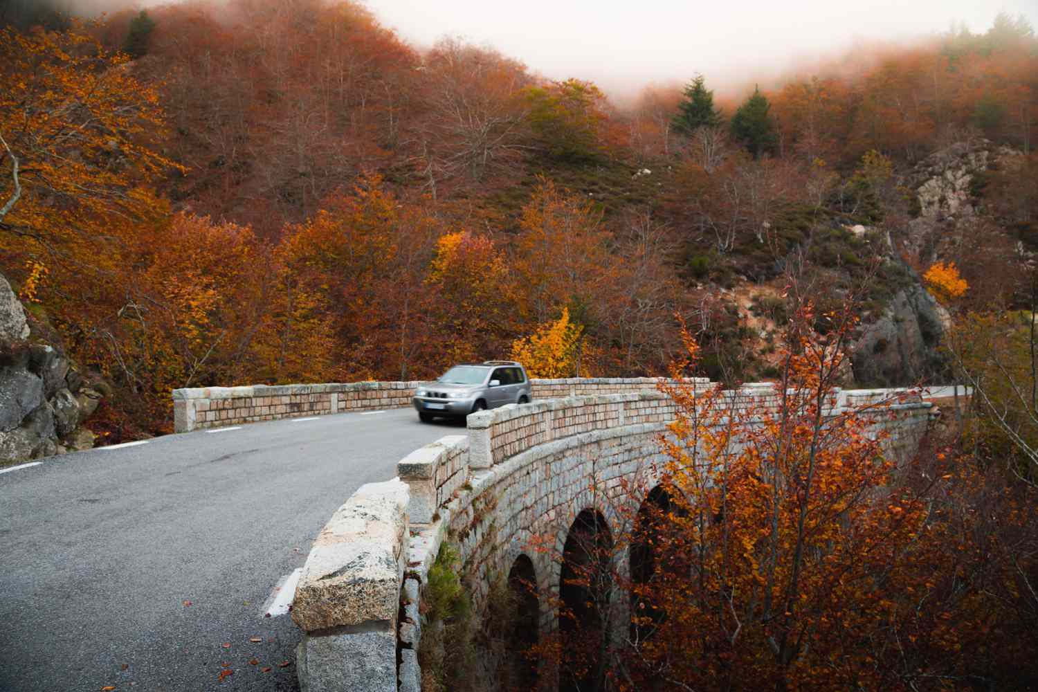 Car driving over a stone bridge surrounded by fall foliage