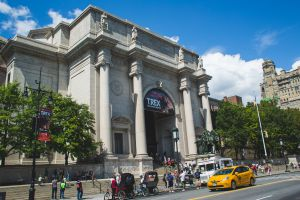 American Museum of Natural History, New York City, NY