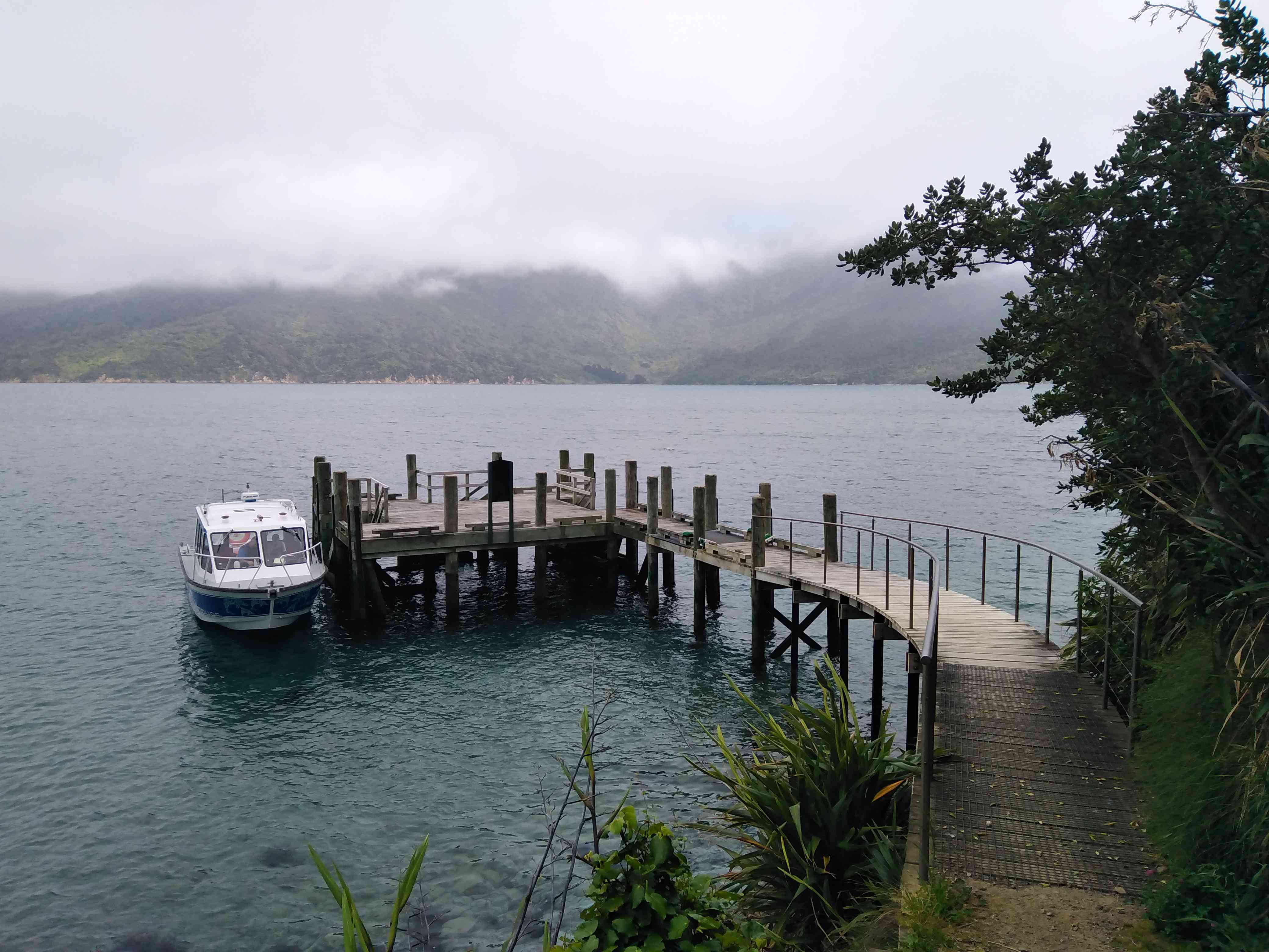 Wooden jetty and small boat in the sea with surrounding bushes