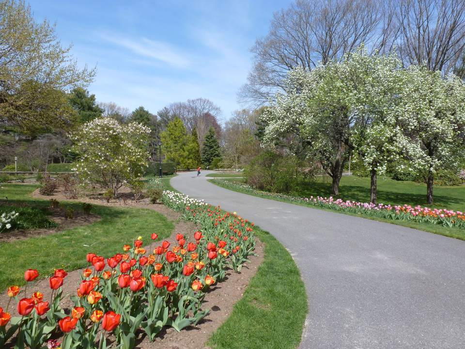 A Photo Overview of Clark Botanic Garden