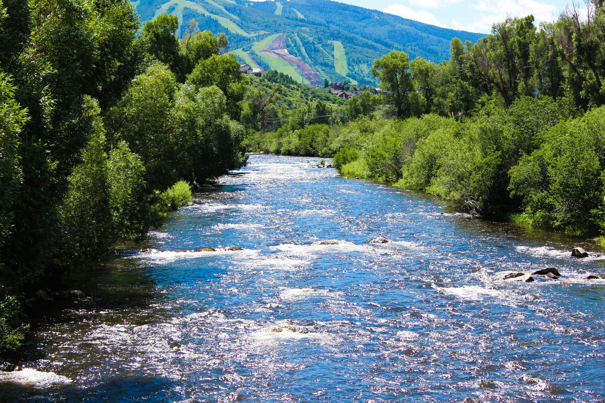 The Yampa River in Steamboat