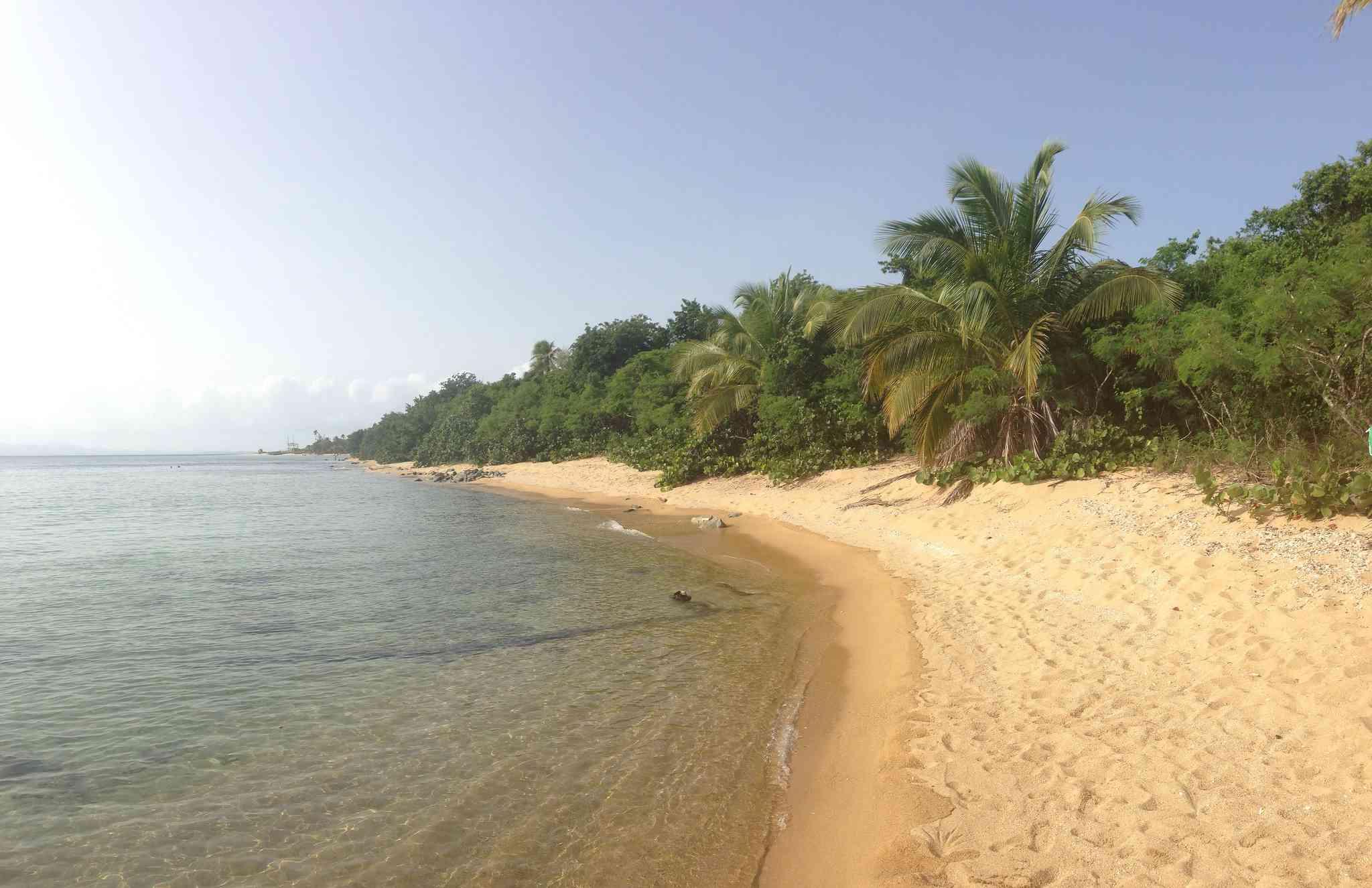 Green beach, Vieques