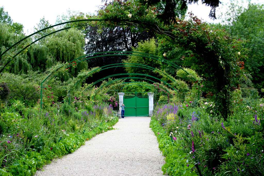 Elegant climbing plants and flowers at Monet's gardens in Giverny.
