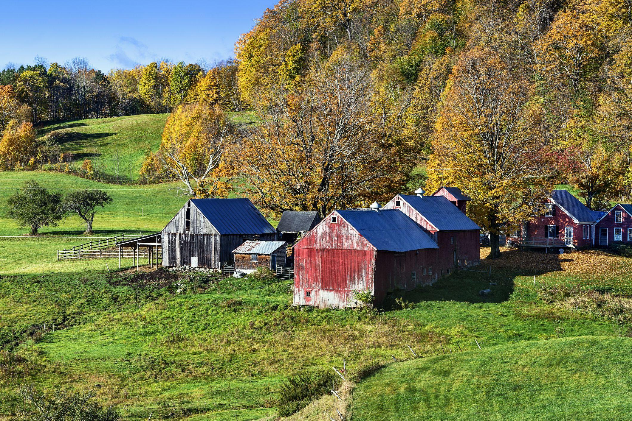 Jenne Farm in the autumn