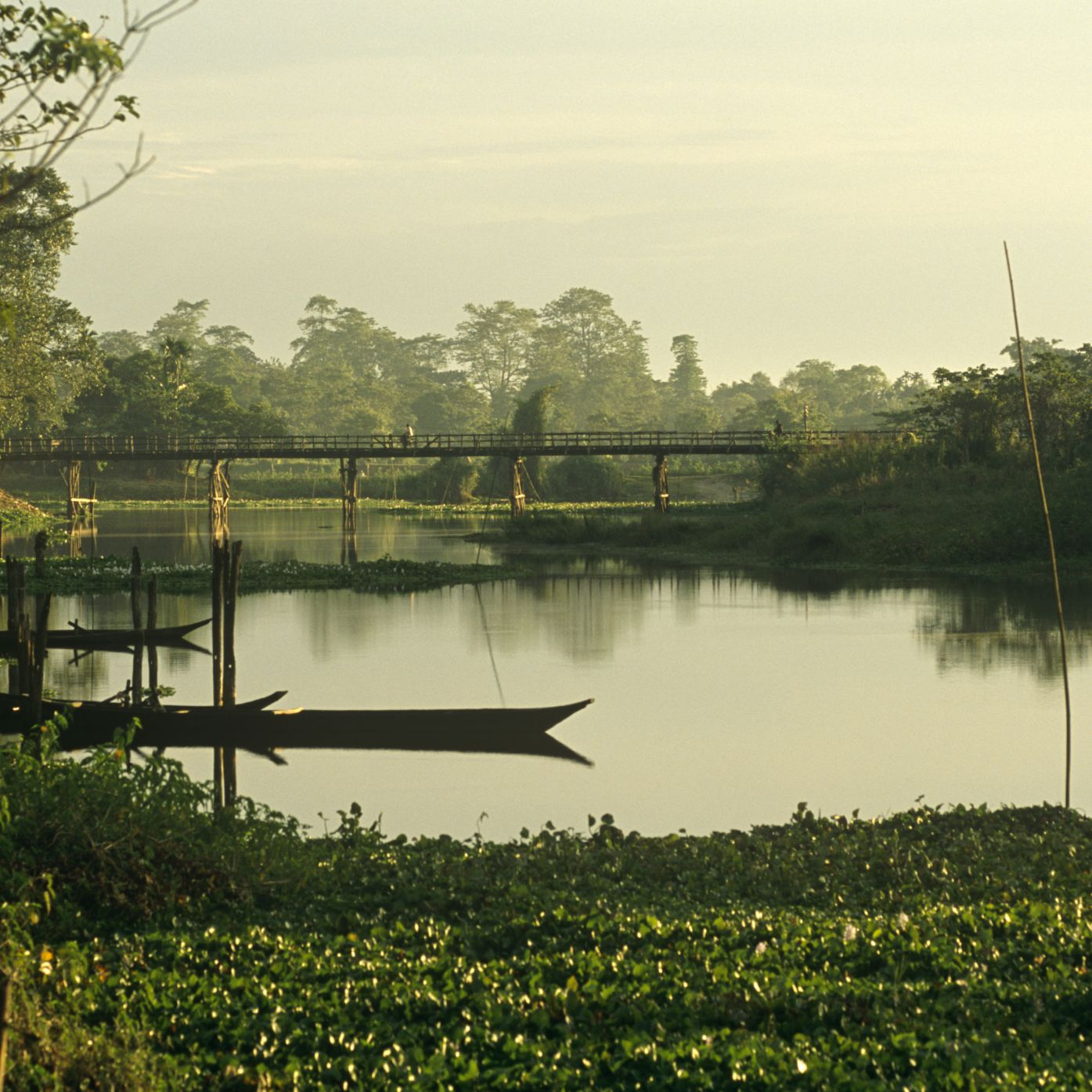 Majuli Island Assam Travel Guide