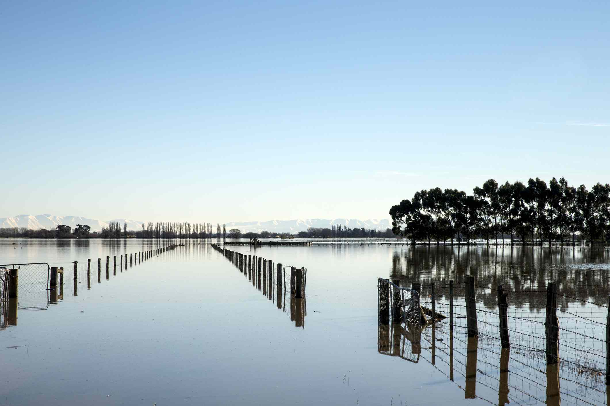 reflective lake surface with fence posts and trees in background