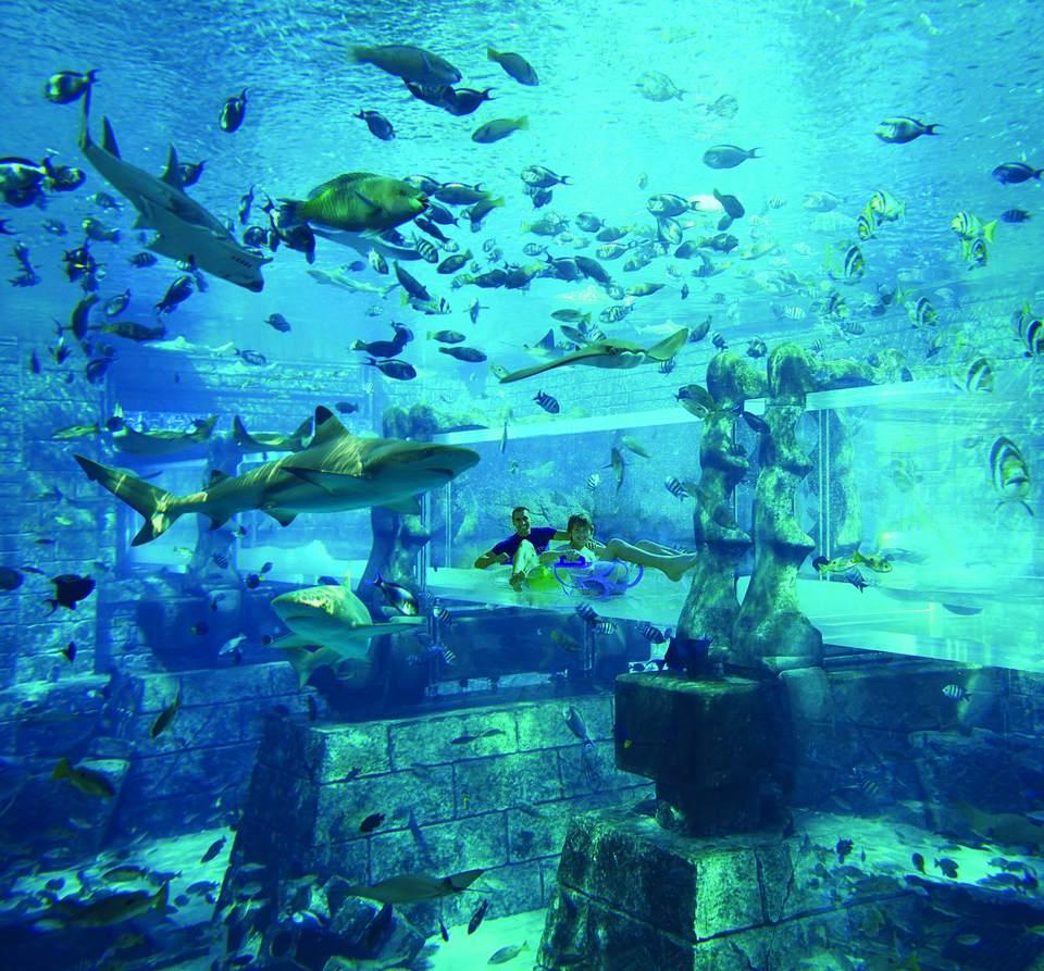 atlantis the palm dubai underwater water slide atlantis41 underwater