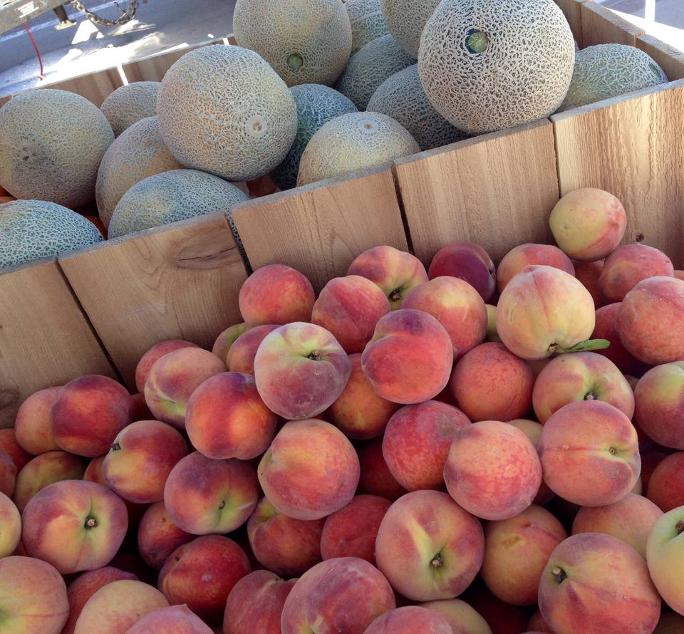 Denver Farmers Markets: Top 11 Farmers Markets In Denver