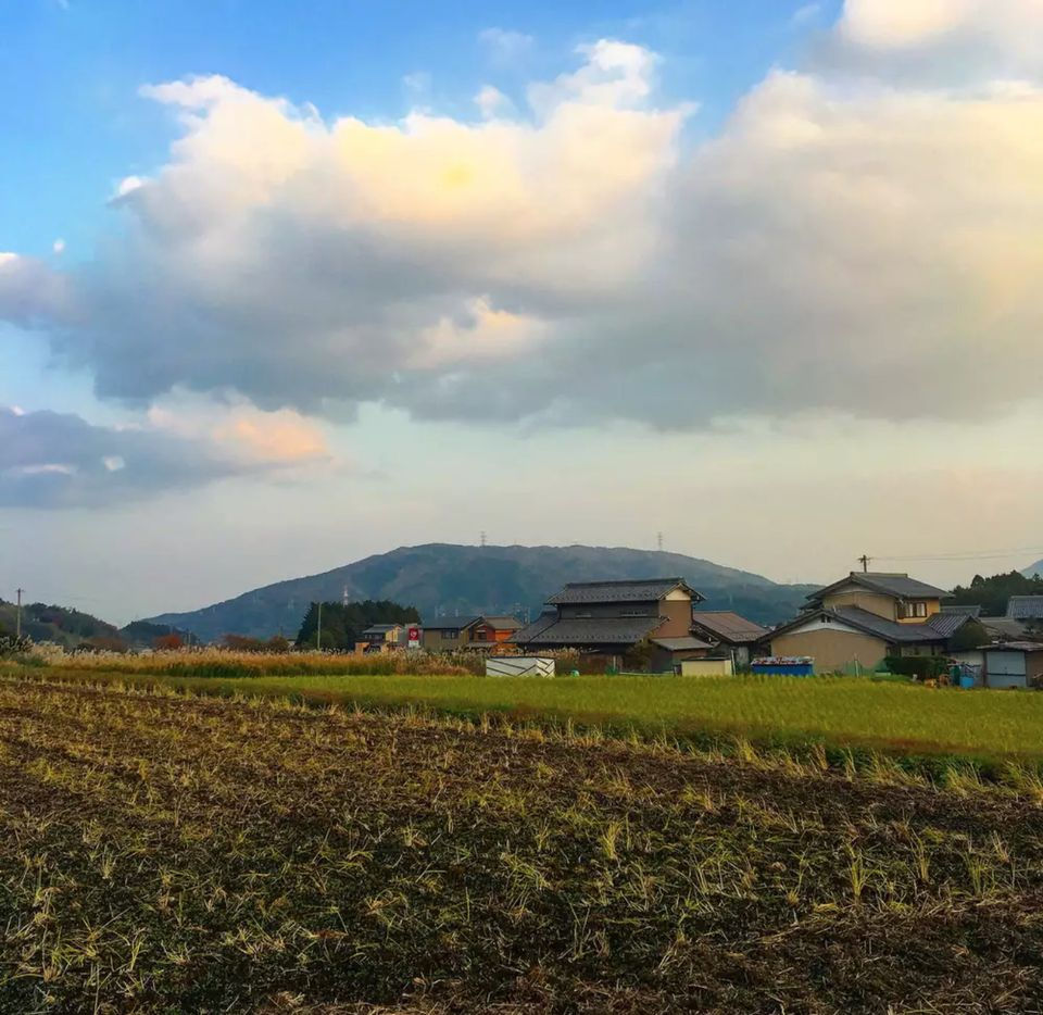 view of japanese rice fields and houses