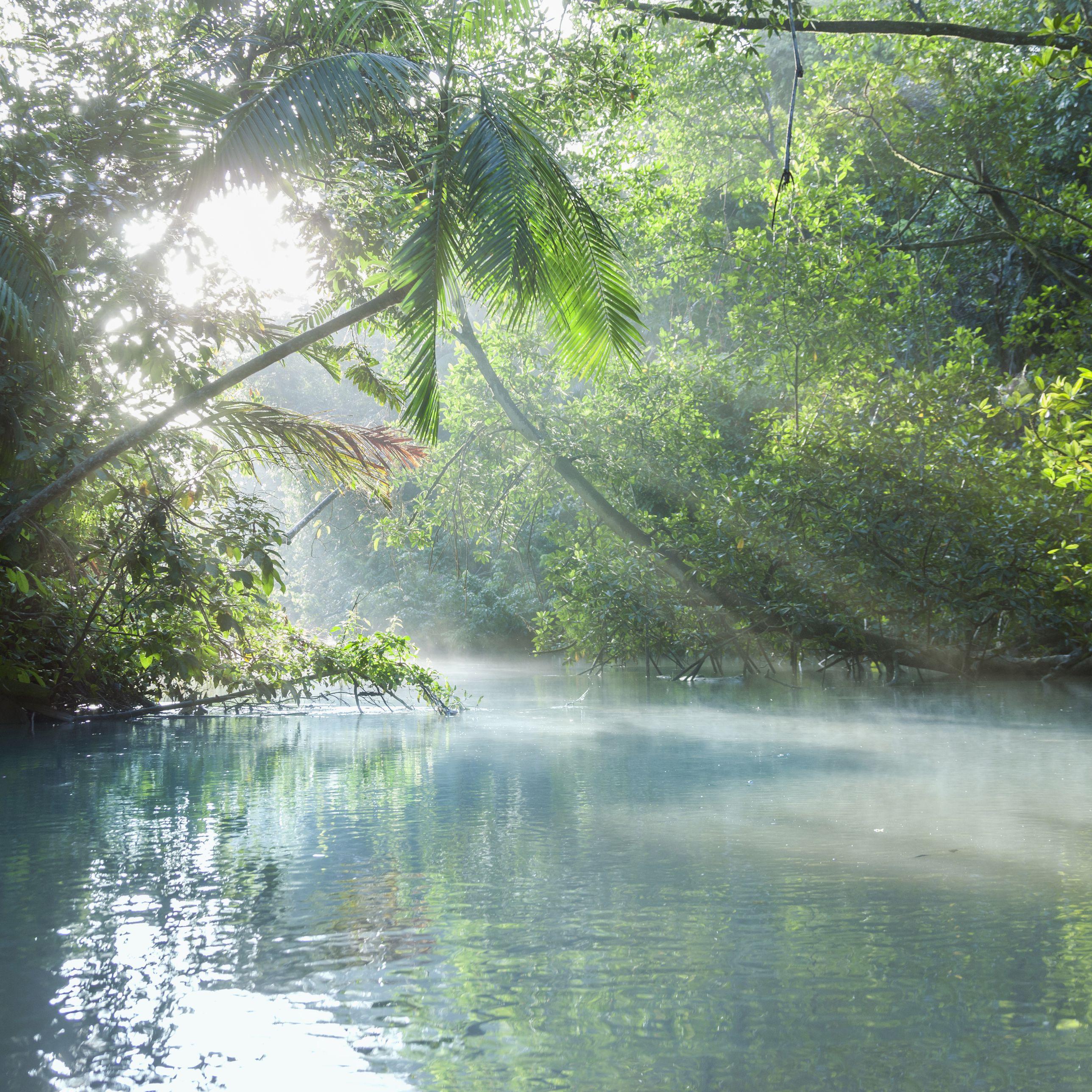 Orinoco River System In South America