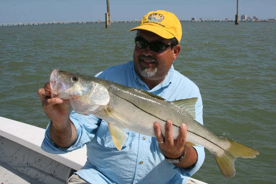 South Padre Island Snook
