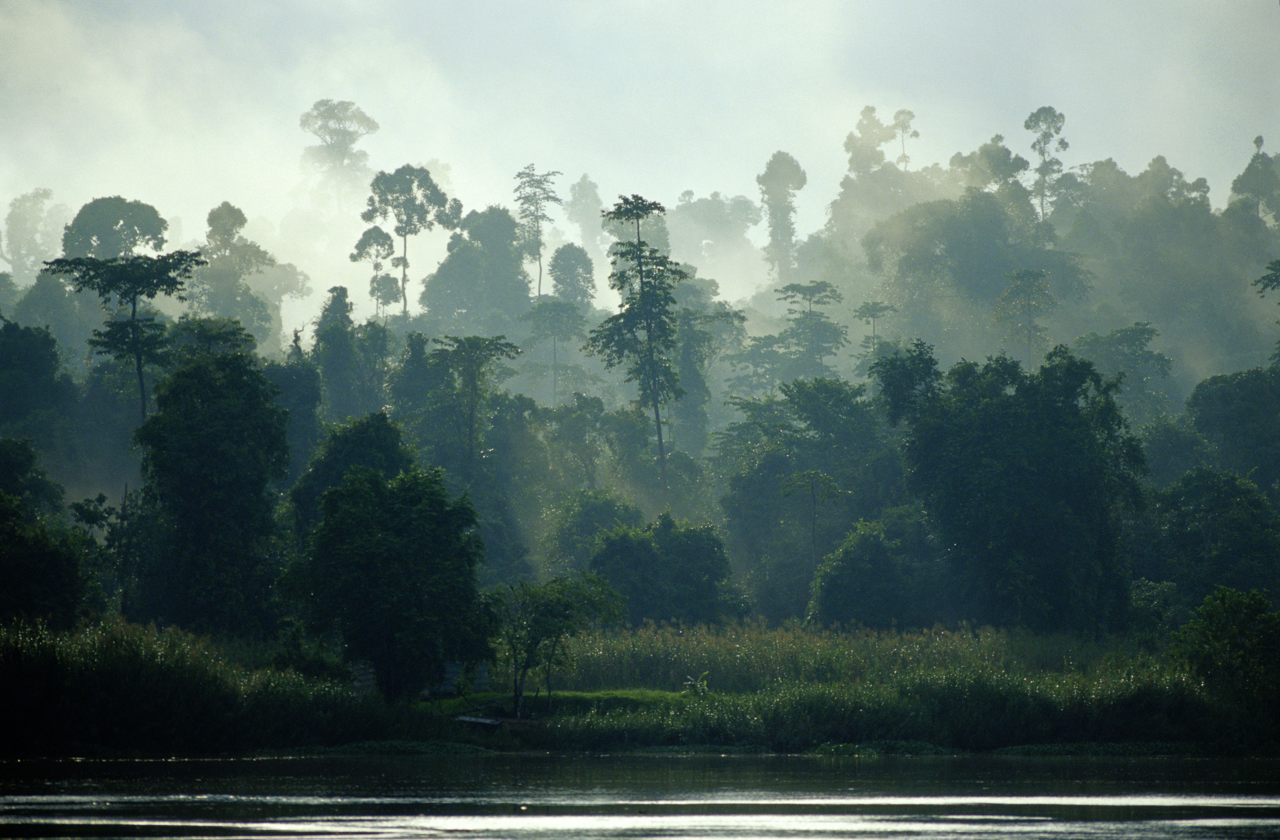 The 10 Best Hikes in Borneo