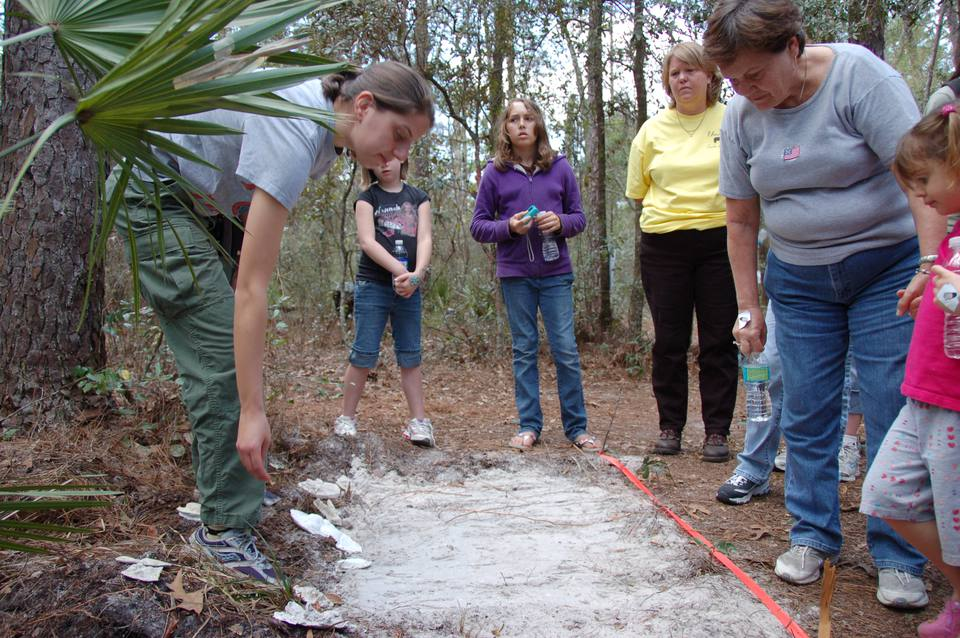 Deep in the Ocala National Forest during the Florida Wildlife Festival, biologists show visitors what bear tracks look like.