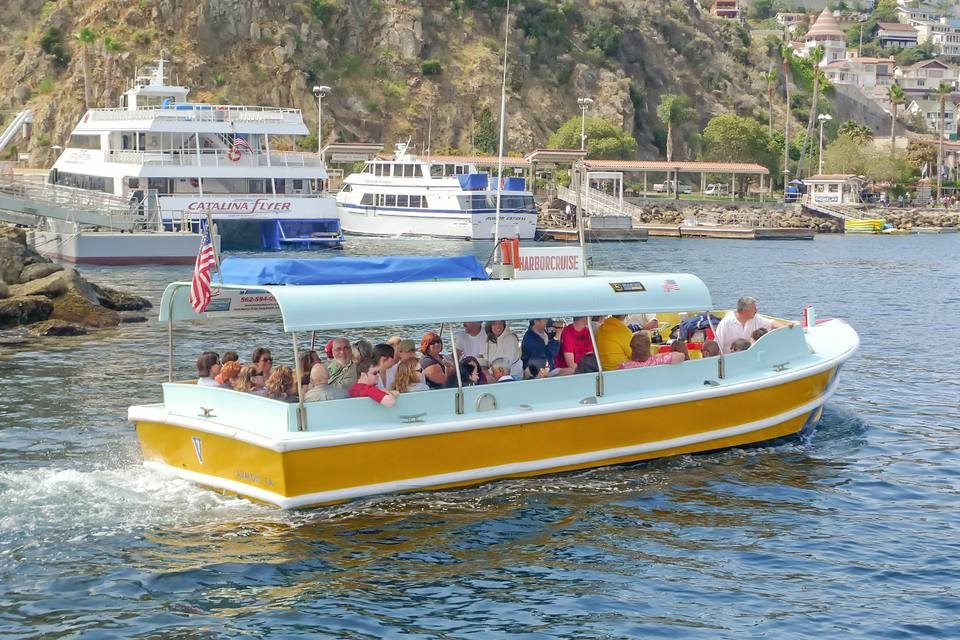 Taking a Harbor Cruise in Catalina