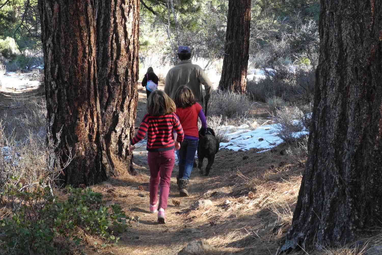 Family Hiking On The Browns Creek Trail Near Reno Nevada