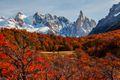 Beautiful autumn near Cerro Torre. Patagonia, Argentina