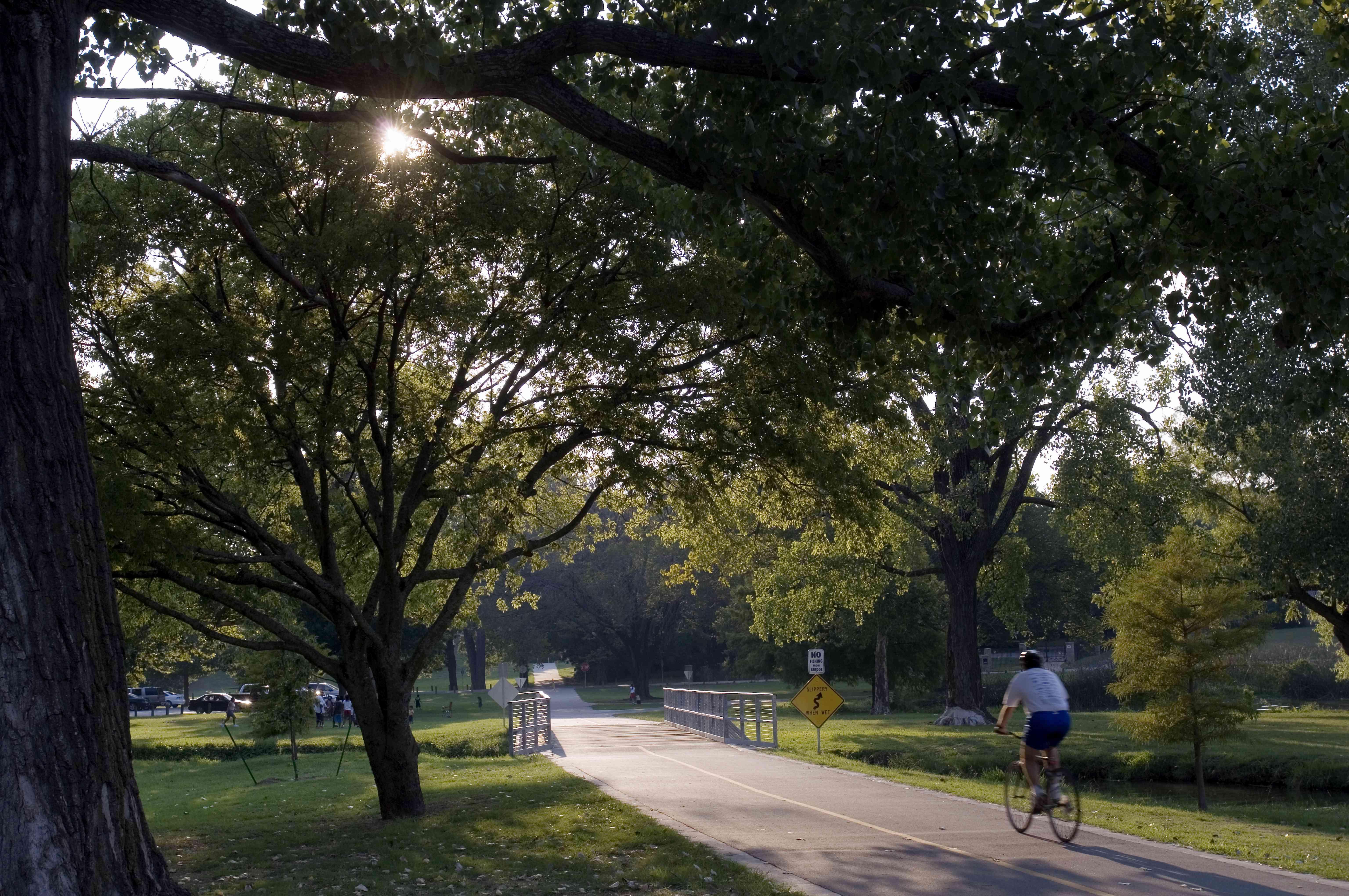 Biker riding on a path through White Rock lake park