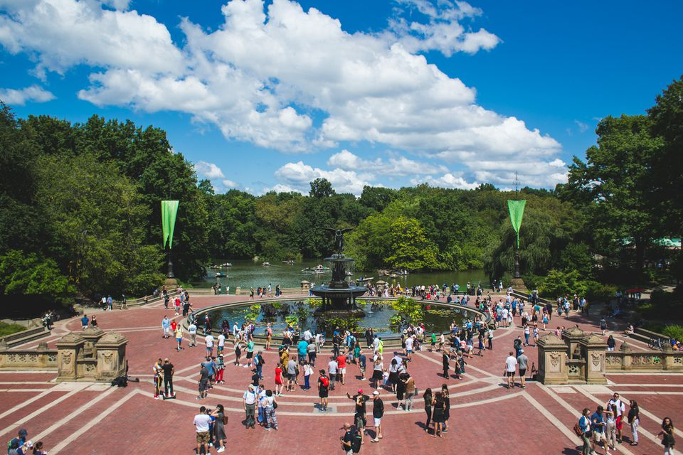 Central Park in New York City, NY