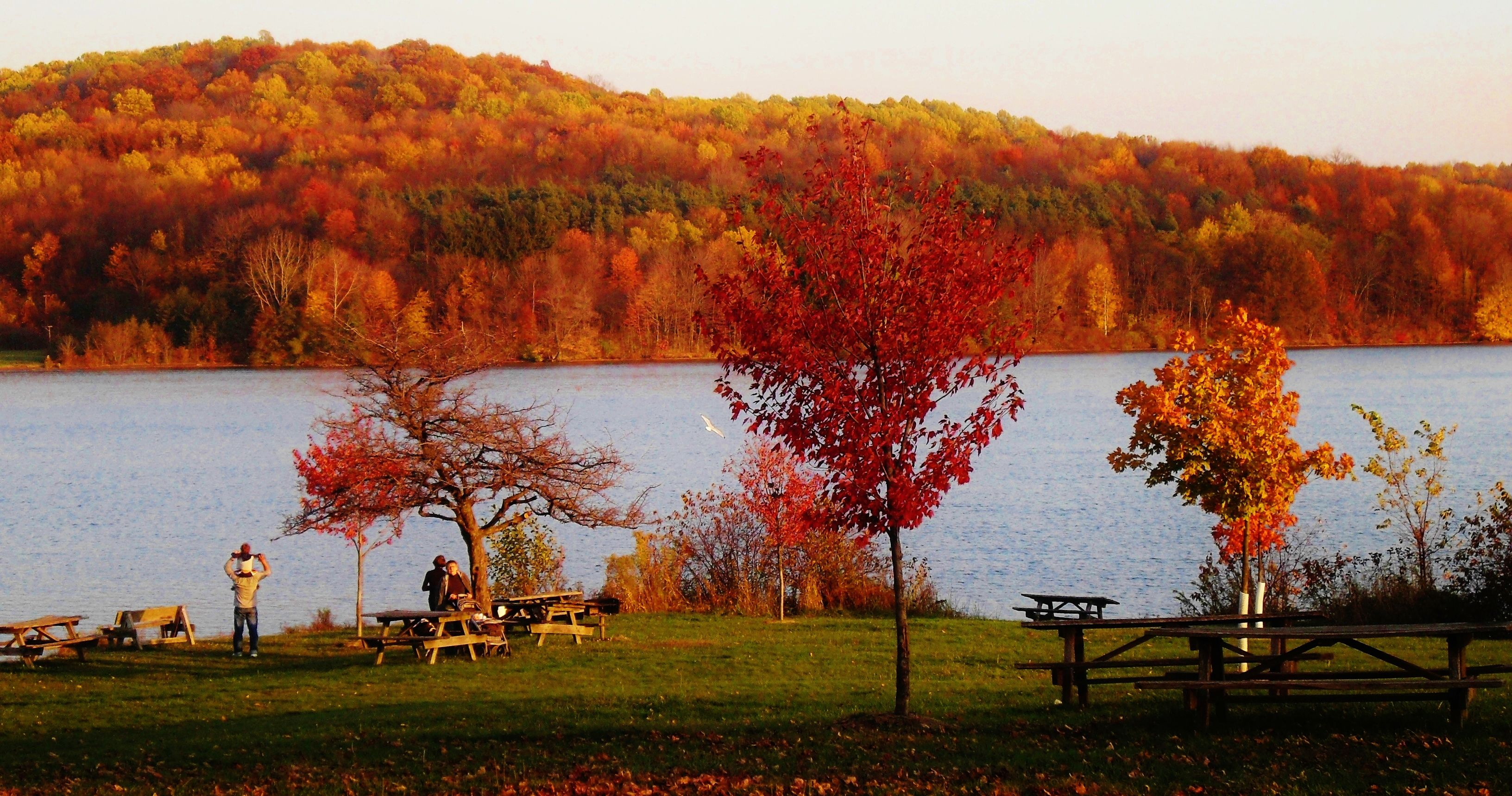 Image of Moraine State Park in the fall overlooking the lake where the trees have all turned fall colors.