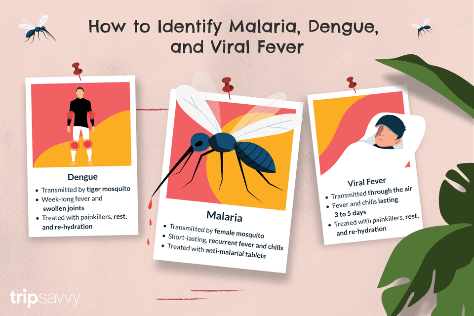 How to identify malaria, dengue, and viral fevel